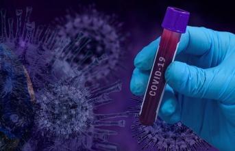 Mutasyonlu virüs, bölgemize de sıçradı !