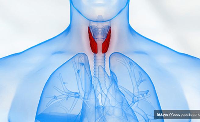 Tiroid kanseri nedir ? Tedavi yöntemleri ve belirtileri…