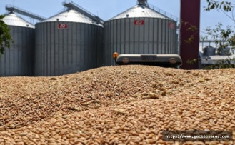 TMO yüzünden çiftçiler mağdur mu oluyor ?